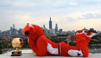 Los Bulls, campeones de la NBA en mascotas. Benny, el mejor de la temporada (Vídeo)