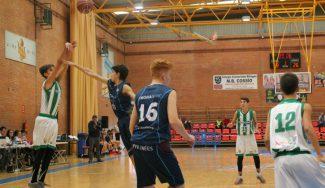 El Betis vuelve a brillar, esta vez ante el Andorra. Decisivo partido por la tarde ante Dominion Bilbao Basket
