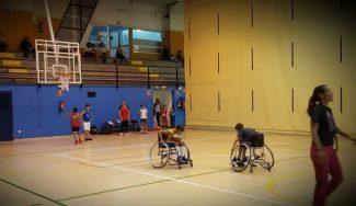 Siguen marcando el paso: primer día de baloncesto inclusivo en Las Rozas. ¡Exitazo! (Vídeo)
