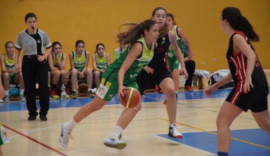 Preparando el Campeonato de España: las selecciones andaluzas, a trabajar este fin de semana