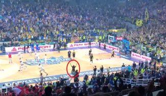 Un aficionado en silla de ruedas lidera la animación al AEK en el OAKA