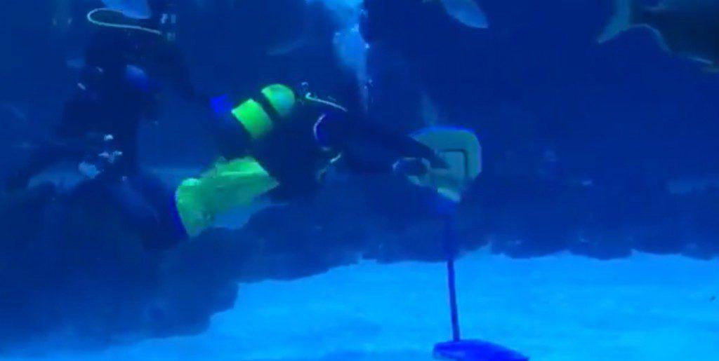 ¿La presentación más original? Shurna hace un mate… ¡bajo el agua!